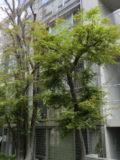 ロケ地検索サイト【ロケ太郎】(ID番号:020)>の写真